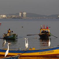 Homem em um pequeno barco na Baía de Guanabara com o Pão de Açúcar ao fundo