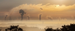 """'It's been 70 years since we entered the Anthropocene"""", British scientist says"""