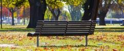 Áreas verdes urbanas: desafios da cidade, soluções da natureza